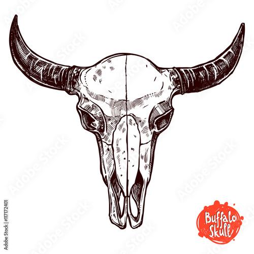 Printed kitchen splashbacks Watercolor skull Buffalo Skull Hand Drawn Sketch