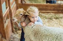 Girl Hugging Lamb