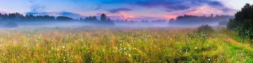 Obraz Wild foggy meadow landscape