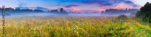 Wild foggy meadow landscape - 117216012