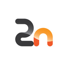 2n Initial Grey And Orange With Shine