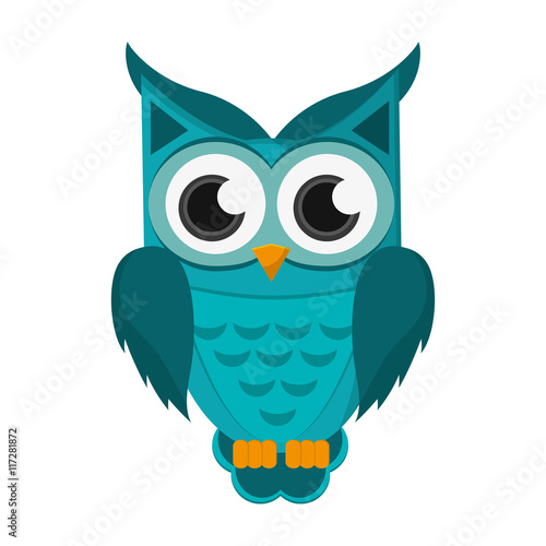 Poster Uilen cartoon flat design owl cartoon icon vector illustration