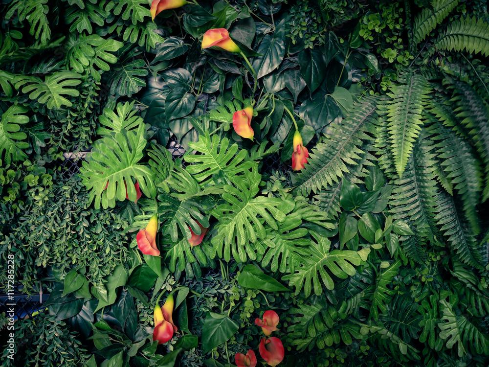 Fototapeta Fashionable green jungle summer background - in exotic vintage tone