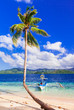 Tropical escape- unique nature and beautiful beaches of Philippines