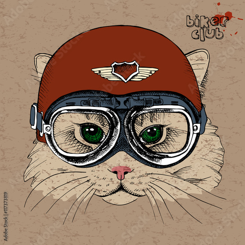 Portrait of a cat in a retro helmet. Vector illustration.