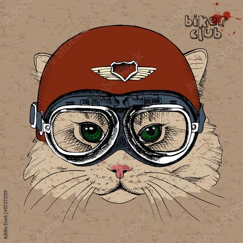 Portrait of a cat in a retro helmet. Vector illustration.