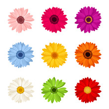 Vector Set Of Nine Colorful Ge...
