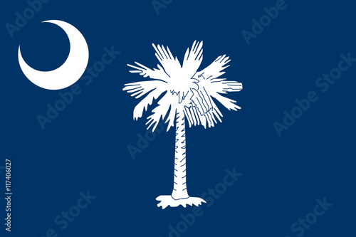 Flag of South Carolina, Authentic version in color and scale