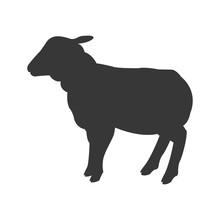 Flat Design Sheep Silhouette Icon Vector Illustration