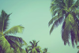 Coconut palm trees at tropical beach vintage filter