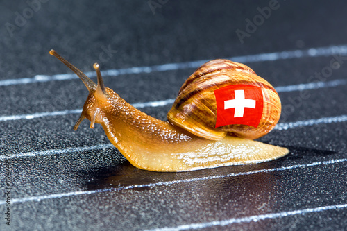 Snail under flag of Switzerland on sports track