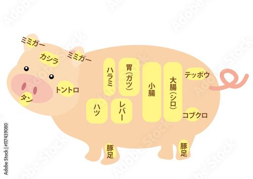 Fotografía  豚肉 内臓部位の名称
