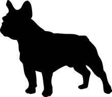 French Bulldog Vector Silhouette
