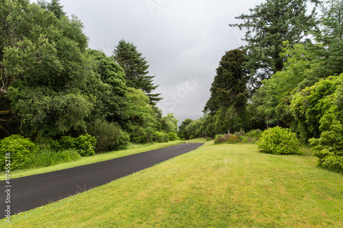 Aluminium Prints Garden asphalt road at connemara in ireland