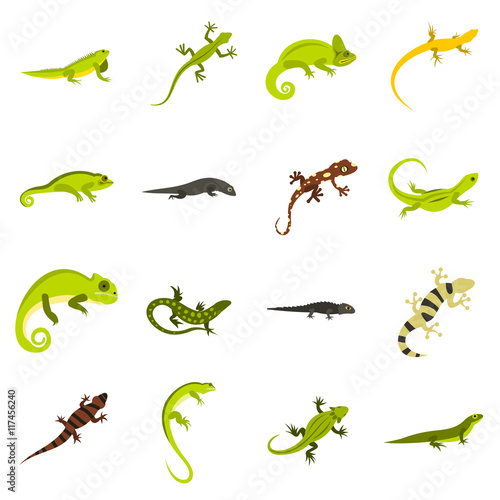 Flat lizard icons set Tablou Canvas