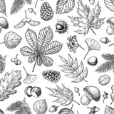 Autumn seamless vector pattern with leaves, berries, fir cones, - 117482879