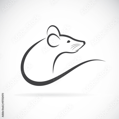 Photo  Vector of a rat design on a white background.