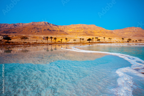 Dead Sea seashore with palm trees and mountains on background Canvas-taulu