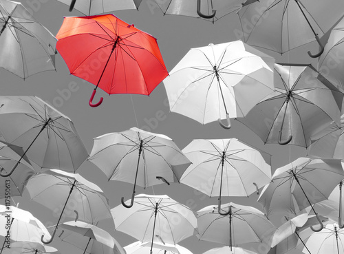 Cuadros en Lienzo Guarda vermelho chuva