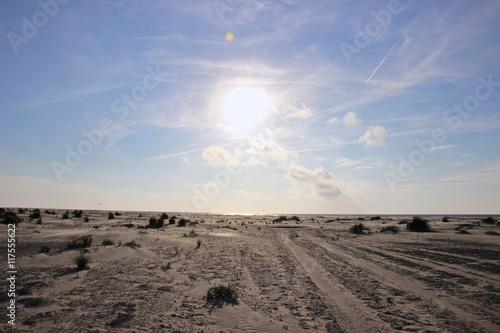 Tuinposter Canarische Eilanden Sanddünen an der Nordsee