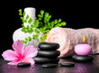 beautiful spa concept of pink hibiscus flower, leaf fern, thai h