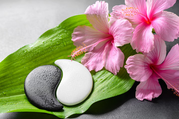 Fototapeta Do Spa beautiful spa concept of pink hibiscus flowers and Yin-Yang of s