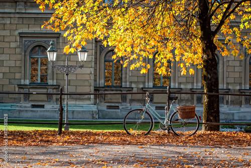 Niebieski rower w jesiennym parku miejskim