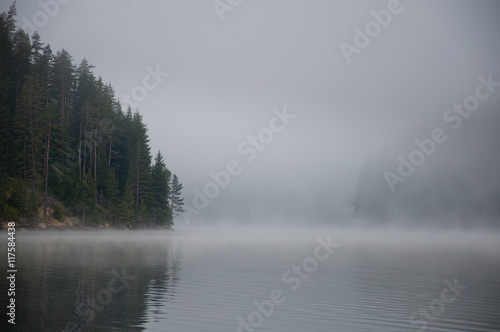 Poster Donkergrijs Mysterious landscape with fog, lake and forest