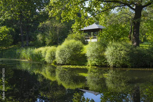Fotografering  The Japanese garden in the summer