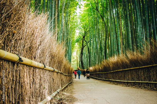Papiers peints Bambou Bamboo Forest at arashiyama, Kyoto, Japan.