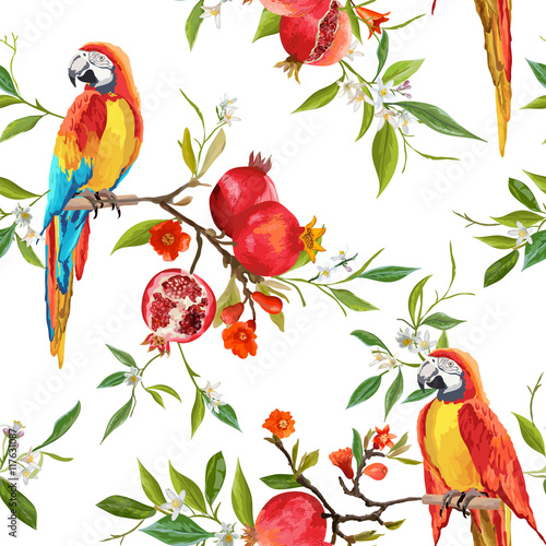 Poster Parrot Seamless Pattern. Pomegranate Tropical Background. Floral Pattern