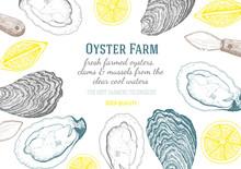 Vector Illustration Of Oyster....