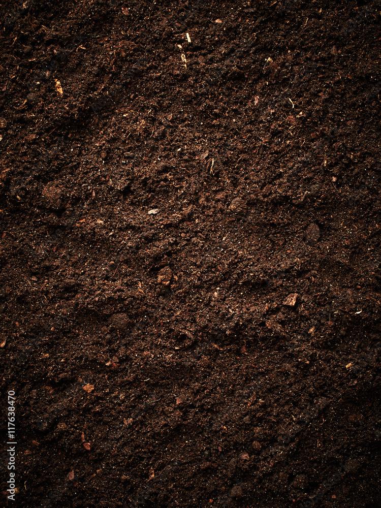 Fototapeta Soil texture