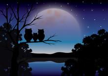 Vector Illustrations ,Owls Fam...