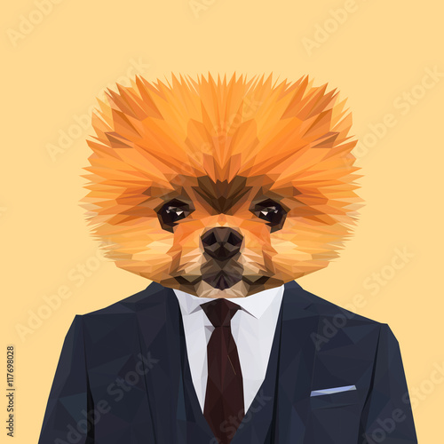 Valokuva  Boo Pomerian dog animal dressed up in navy blue suit with red tie