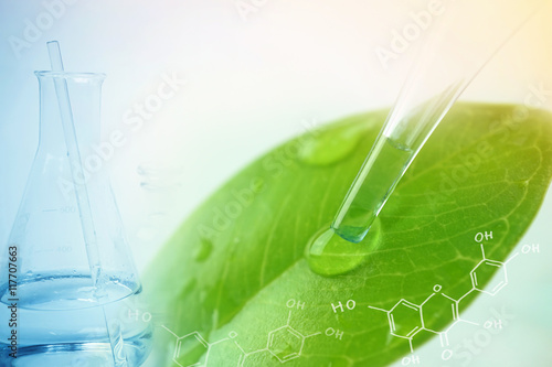 Fotografia  water drop from leaf and laboratory for natural chemistry concept
