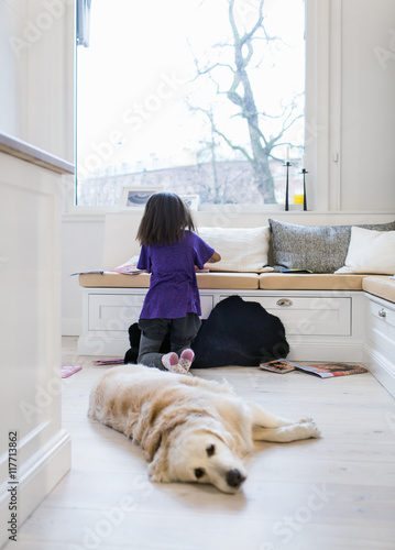 Girl studying in living room with dog relaxing in foreground