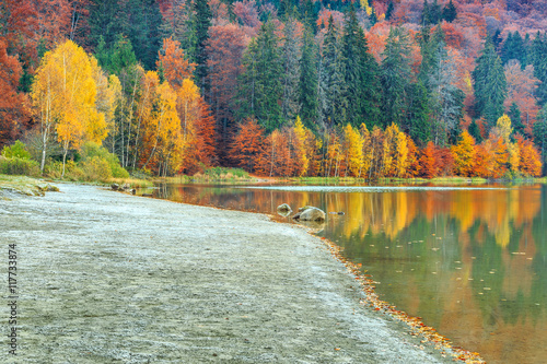 Staande foto Olijf Autumn landscape with colorful forest,St Ana Lake,Transylvania,Romania