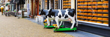 Typical Dutch Image Of Cows An...