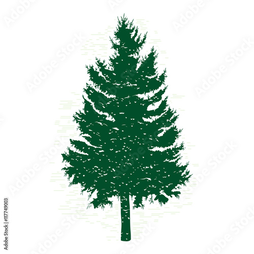Silhouettes of green pine tree vector illustration vintage silhouettes of green pine tree vector illustration vintage textured grunge fir tree design template thecheapjerseys Gallery