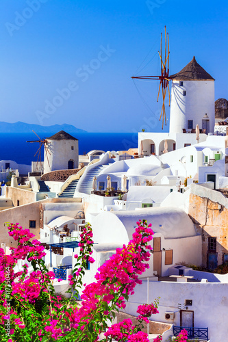 Fototapety, obrazy: beautiful Greece . traditional windmills of Santorini