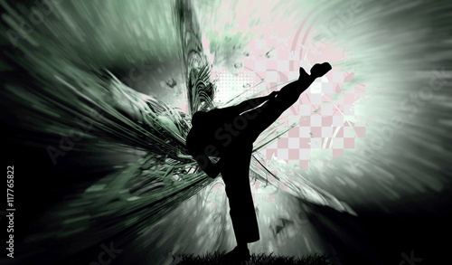 Cadres-photo bureau Combat Martial art