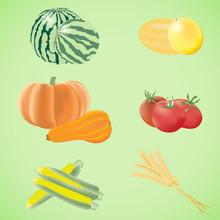 Summer Harvest Vegetables And Grains