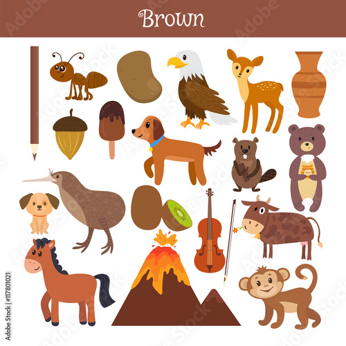 brown-learn-the-color-education