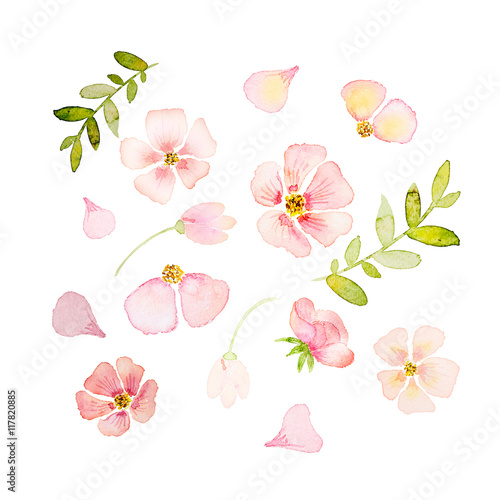 Keuken foto achterwand Kersenbloesem Spring watercolor blossoms, hand drawn