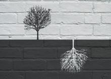 Urban Art, Black And White Trees