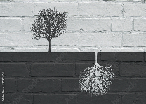 Poster Graffiti Urban art, Black and white trees