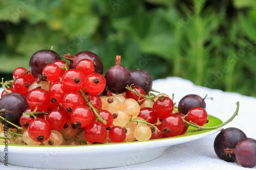 Letnie owoce takie jak porzeczki i agrest na zielonym tle