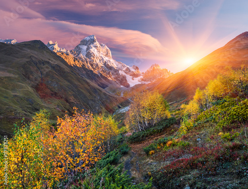 Spoed Foto op Canvas Grijze traf. Autumn landscape in the mountains