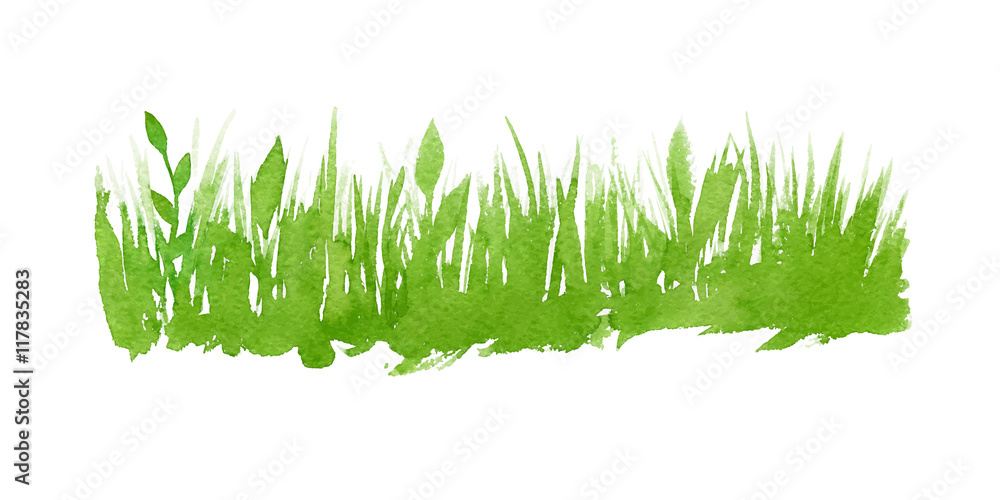 Fototapety, obrazy: Vector green watercolor natural, organic, bio, eco label and shape, grass on white background. Hand drawn stain.